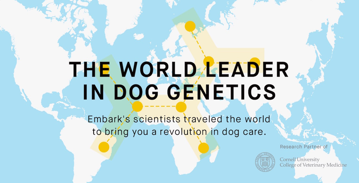 What job can u get with a PhD in the study of Dogs?